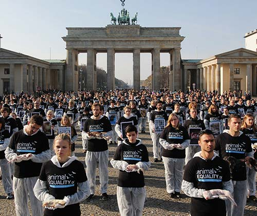 timeline_500x420_animal_rights_demo_2014_berlin