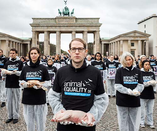 timeline_500x420_animal_equality_germany