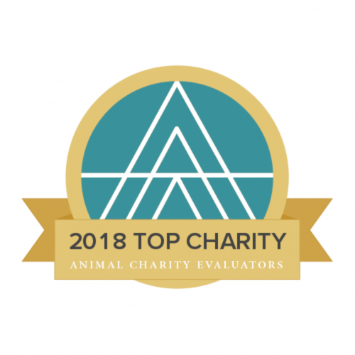 ace-topcharity-2018